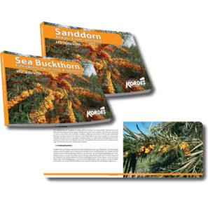 Buch Baumschule, Jungpflanzen, Gartencenter