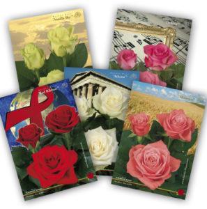 Plakate, Baumschule, Jungpflanzen, Gartencenter